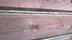 Фото: Конопатка профилированного бруса - нужно ли, технология